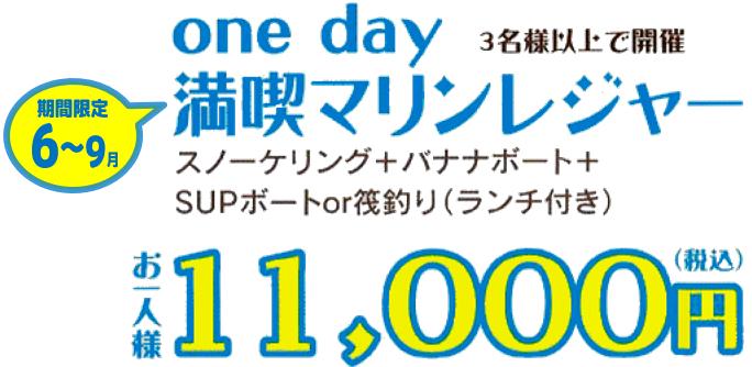 SUP、スノーケリング、バナナボート(ランチ付き)で11,000円